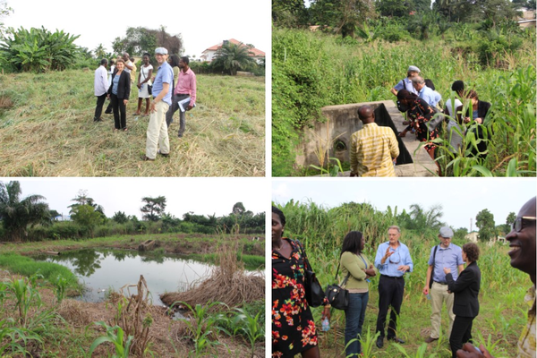 Dutch partners visit IWMI CapVal project site in Ghana